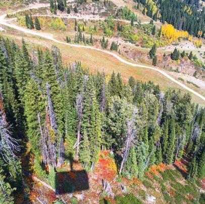 Top of JHole Ski Resort Fall