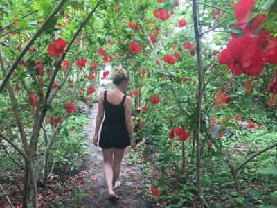 Ometepe Flowers