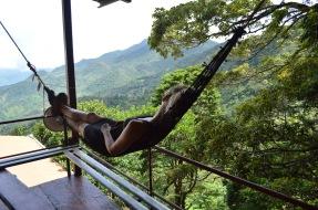 Relaxation in the Rainforest